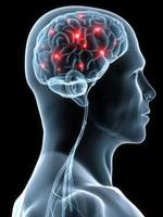 Neurologist   Neurology Treatment   Neurology Referral   Brooklyn